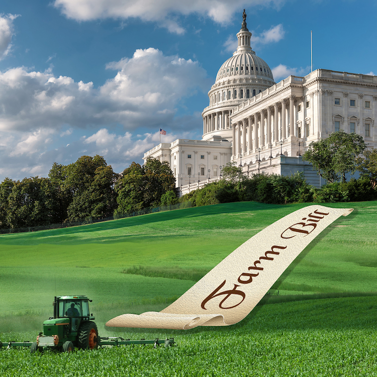 Senate passes farm bill; conference committee next