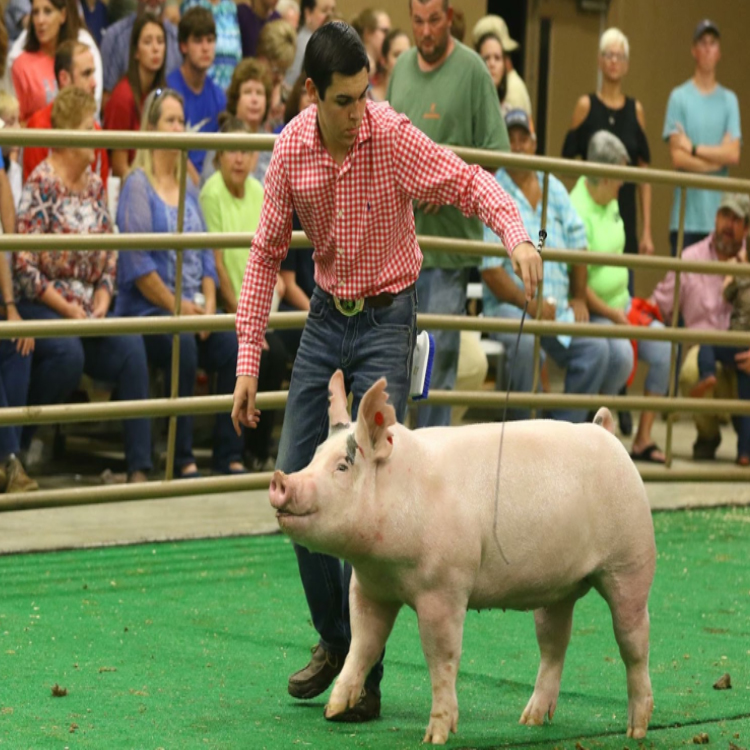 Meet Clay Parker, State FFA Secretary