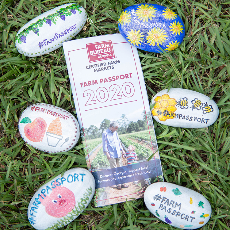 The Farm Passport Rock Hunt