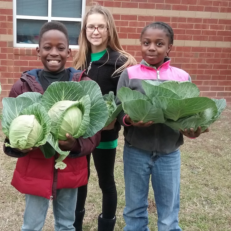 Ag in the Cafeteria: Teaching students how farmers grow their food