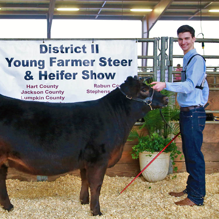GFB 2nd District holds 10th annual cattle show