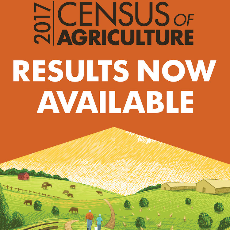 Ag Census results show size of Georgia farms shifted