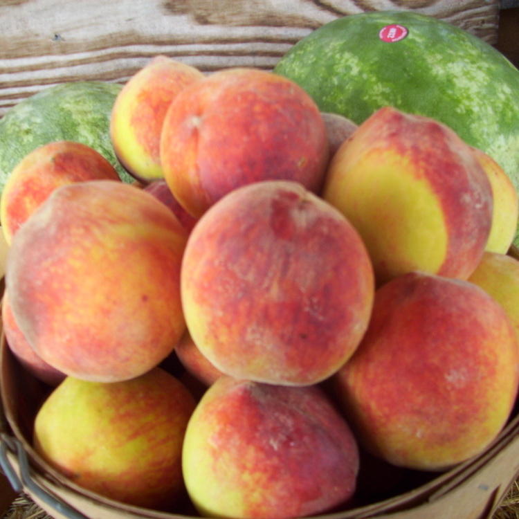 Peaches, cotton expected to make big production gains