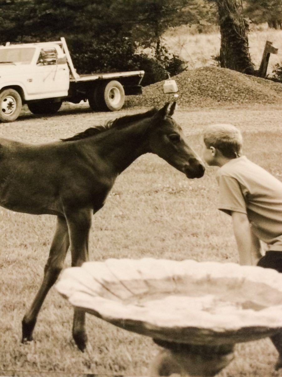 John and horse 2