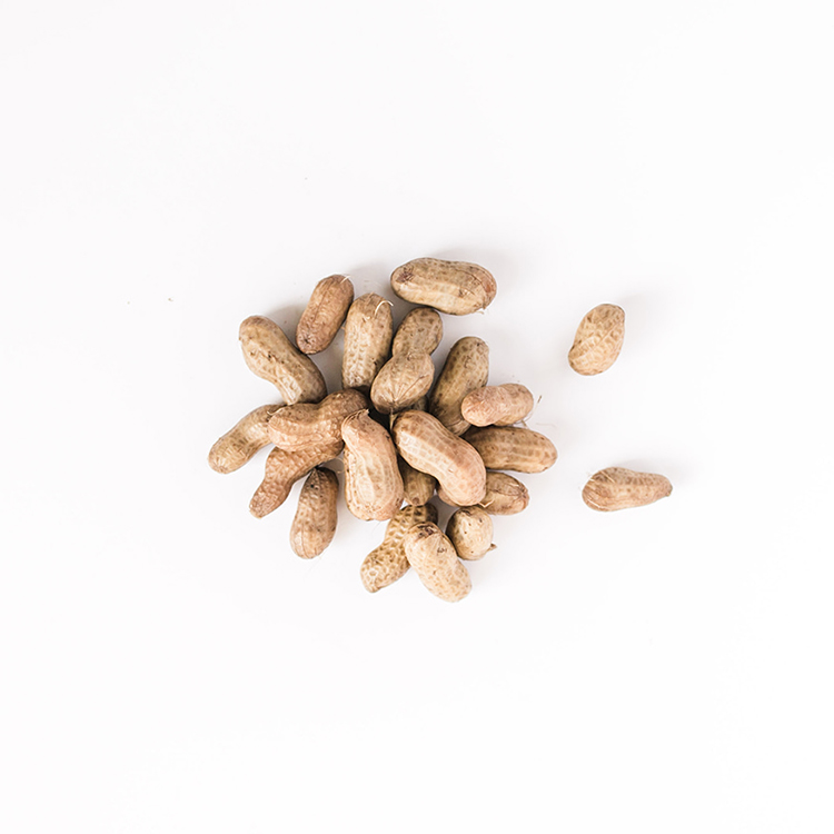 Boiled Peanuts from Hardy Farms